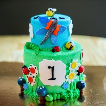 Tag Washington DC Birthday Cake Farm Bug And Garden