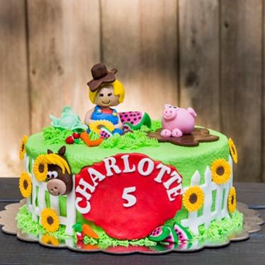 Washington DC birthday cake Aspen Street Cakes